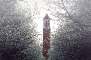 University Of Alabama Prints - Denny Chimes Foggy Blossoms Print by Ben Shields