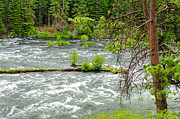 Deschutes Prints - Deschutes River in Central Oregon Print by Jess Kraft