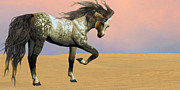 Wild Horses Digital Art Prints - Desert Arabian Horse Print by Corey Ford