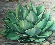 Desert Bloom Print by Conni  Reinecke