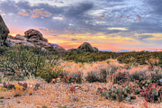West Texas Photos - Desert Color by JC Findley
