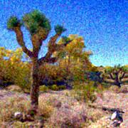 Glenn McCarthy Art and Photography - Desert Dancing - Psalm 149