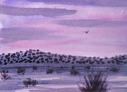 Suzanne McKay - Desert Evening
