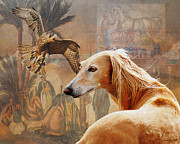 Saluki Framed Prints - Desert Heritage Framed Print by Judy Wood