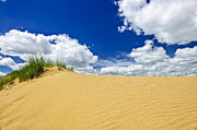 Sand Photo Prints - Desert landscape in Manitoba Print by Elena Elisseeva