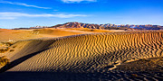 Desert Metal Prints - Desert Lines Metal Print by Chad Dutson