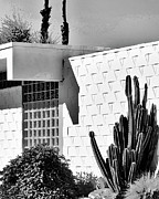 7 Photos - DESERT MODERN BW Palm Springs by William Dey