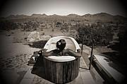 Cindy Nunn - Desert Oasis 1