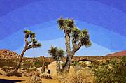 Cindy Nunn - Desert Retreat 1