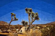 Cindy Nunn - Desert Retreat 2