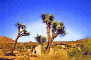 Cindy Nunn - Desert Retreat 3