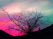 Pinks And Greens Posters - Desert Sunset Poster by Terril Heilman