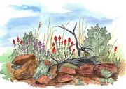 Desert Wildflowers Print by Cathie Richardson