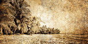 Fantasy Tree Art Prints - Deserted Beach Print by Skip Nall