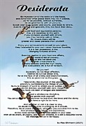 Geese Prints - Desiderata Flying Geese Print by Barbara Chichester