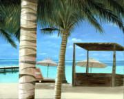 Original Oil Paintings - Destiny Turks and Caicos by Cecilia  Brendel