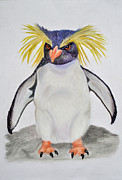 Cold Pastels - Determined Rockhopper by Danae McKillop