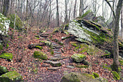 Arkansas State Prints - Devils Den Stone Stairs in Autumn Print by Tanya Harrison