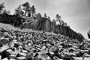 Devils Postpile National Monument Print by Terry Garvin