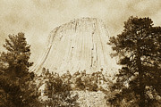 Destinations Digital Art Posters - Devils Tower National Monument Between Trees Wyoming USA Vintage Poster by Shawn OBrien