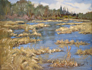 Marshes Prints - Devon Bog Oil Print by Mohamed Hirji