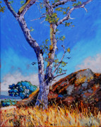 Victoria Paintings - Devonian Gary Oak nfs by Rob Owen