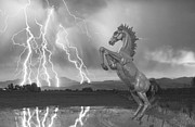 Dia Mustang Bronco Lightning Storm Bw Print by James Bo Insogna