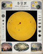 Wellcome Images - Diagram Of The Sun With Sunspots C