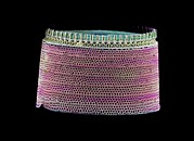 Diatom, Sem Print by Science Photo Library