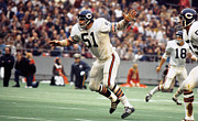 Dick Framed Prints - Dick Butkus in action Framed Print by Sanely Great