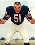 Dick Framed Prints - Dick Butkus Portrait Framed Print by Sanely Great