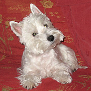 Westie Digital Art - Did you just say walkies? by Charmaine Zoe