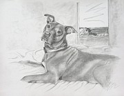 Graphite Portraits Prints - Did You Say Walk Print by Joette Snyder