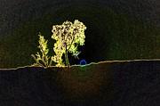 Digital Sunset Print by Jeff  Swan