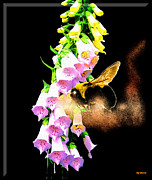 Foxglove Flowers Digital Art Posters - Digitalis Poster by Daniel Janda