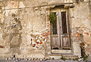 Dilapidated Brown Wood Door Of Portugal II Print by David Letts