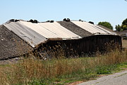 Old Country Roads Prints - Dilapidated Ranch in Petaluma California 5D24408 Print by Wingsdomain Art and Photography