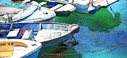 Catalina Prints - Dinghys Print by Cheryl Young