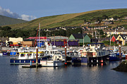 Fishing Trawler Prints - Dingle Harbour County Kerry Ireland Print by Aidan Moran