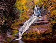 Relaxed Photo Framed Prints - Dingman Falls Pa Framed Print by Nick Zelinsky