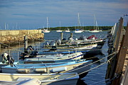 Dingy's Of Mattapoisett  Print by Amazing Jules