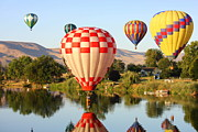 Prosser Balloon Rally Prints - Dip in the River Print by Carol Groenen