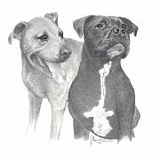 Puppies Drawings Framed Prints - Dippy and Muggs Framed Print by Joe Olivares