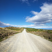 Country Road Prints - Dirt Road Otago New Zealand Print by Colin and Linda McKie