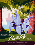 Tourism Digital Art - Discover Puerto Rico by Nomad Art And  Design
