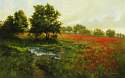 Poppies Field Paintings - Discovered Field by David Henderson