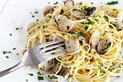 Spaghetti Noodles Prints - Dish Of Spaghetti With Clams Print by Antonio Scarpi