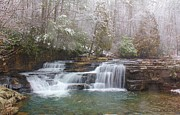 Bland County Posters - Dismal Falls in Winter Poster by Laurinda Bowling