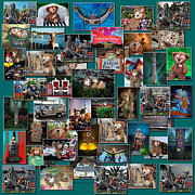 Disney Bear Photos - Disney Bear Collage by Thomas Woolworth