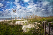 Beachscape Photos - Divine Beach Day  by East Coast Barrier Islands Betsy A Cutler